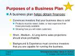 purposes of a business plan1