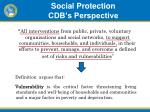 social protection cdb s perspective