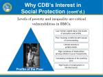 why cdb s interest in social protection cont d