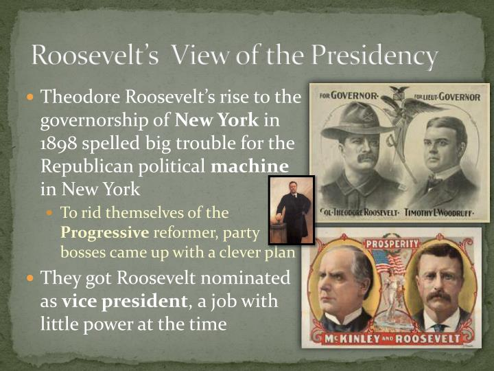 roosevelt s view of the presidency n.
