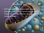 coupling and atp4