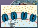 coupling and atp5