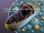 coupling and atp6