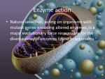 enzyme action3