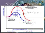 enzymes lower the e barrier