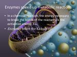 enzymes speed up metabolic reactions