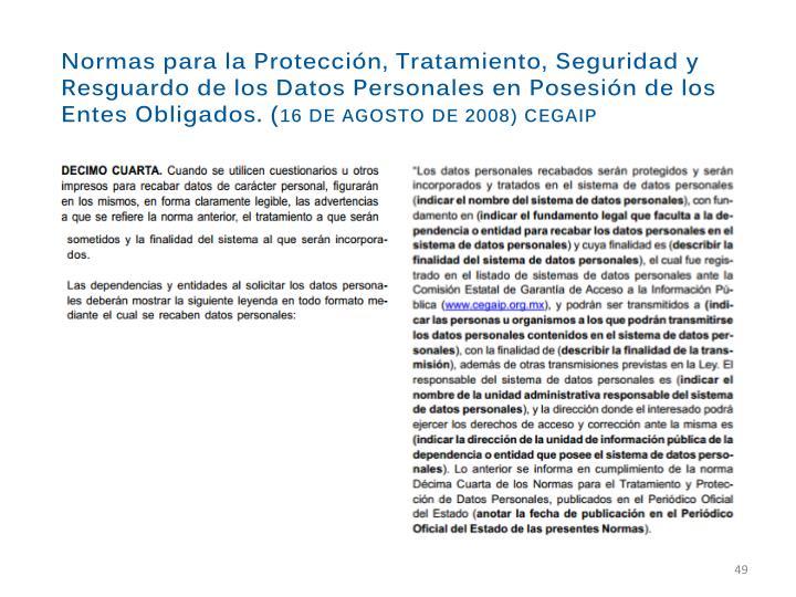 Normas para la Protección, Tratamiento, Seguridad y Resguardo de los Datos Personales en Posesión de los Entes Obligados. (