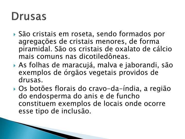 Drusas