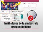 inhibidores de la s ntesis de prostaglandinas