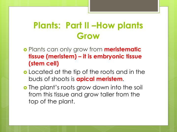 Plants:  Part II –How plants Grow
