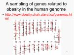 a sampling of genes related to obesity in the human genome