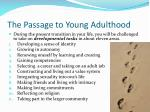 the passage to young adulthood