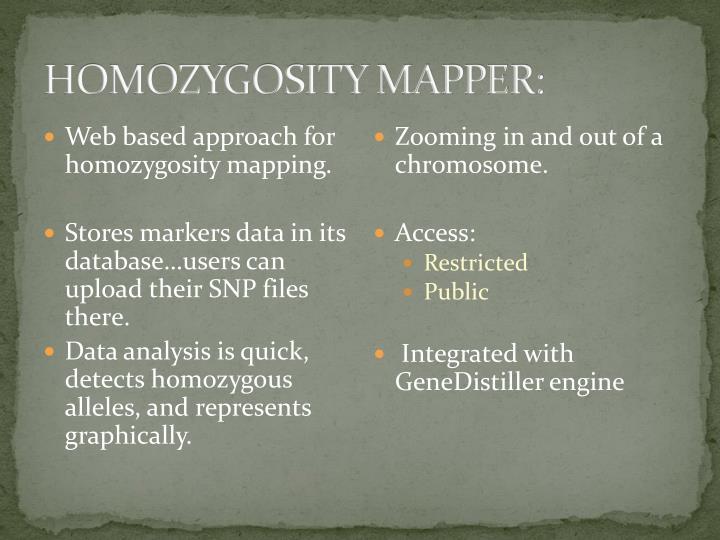 HOMOZYGOSITY MAPPER: