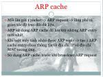 arp cache