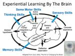 experiential learning by the brain