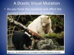 a drastic visual mutation