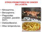 otros promotores de c ncer en la dieta