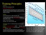 training principles1