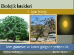 ekolojik stekleri