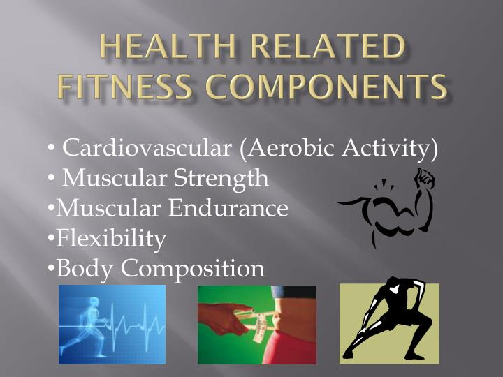 health related fitness components n.