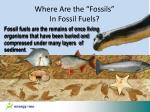 where are the fossils in fossil fuels1