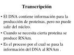 transcripci n