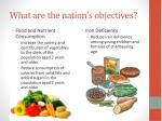 what are the nation s objectives2