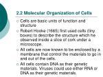 2 2 molecular organization of cells
