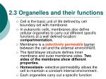 2 3 organelles and their functions