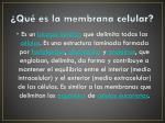 qu es la membrana celular