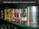 example options for preservation