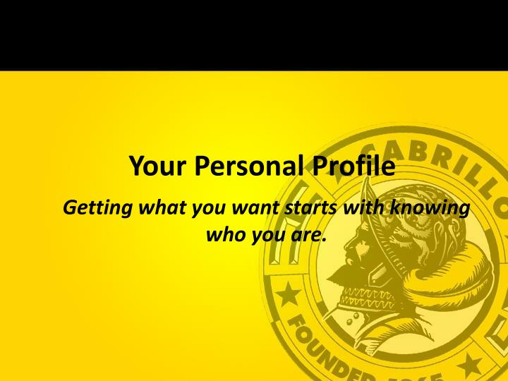 your personal profile n.