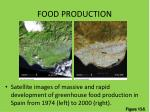food production1