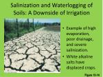 salinization and waterlogging of soils a downside of irrigation