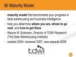 bi maturity model
