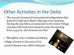 other activities in the delta