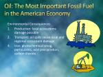 oil the most important fossil fuel in the american economy