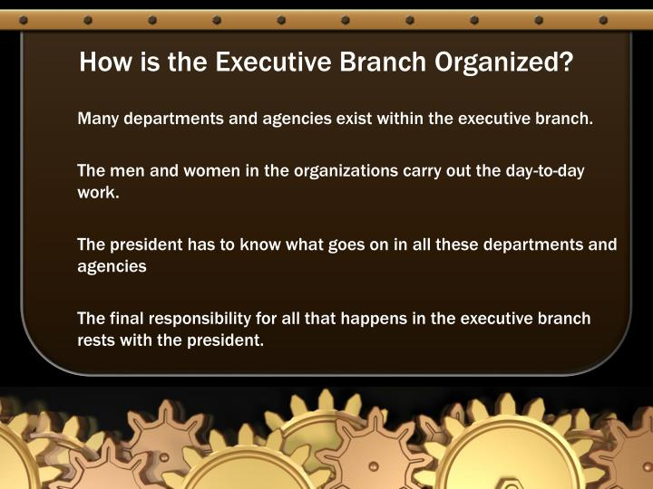 How is the Executive Branch Organized?