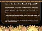 how is the executive branch organized