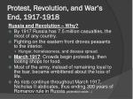 protest revolution and war s end 1917 1918
