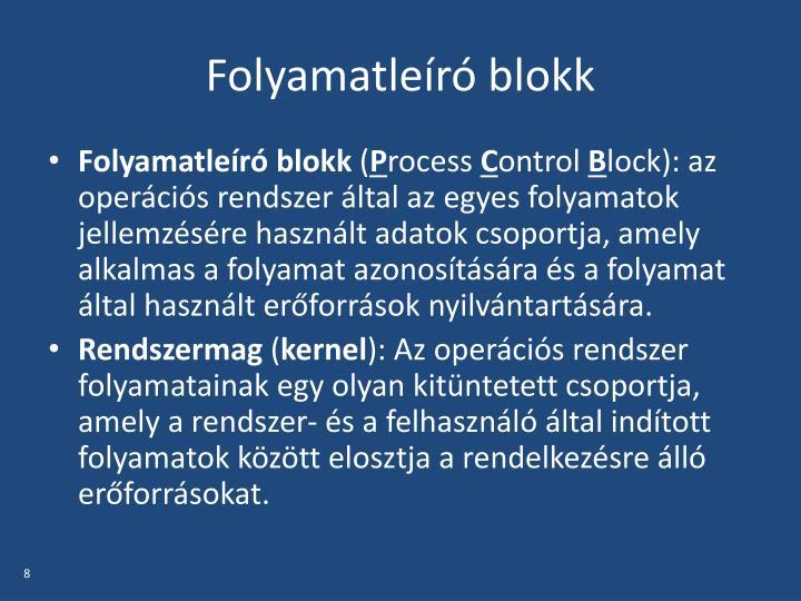 Folyamatleíró blokk