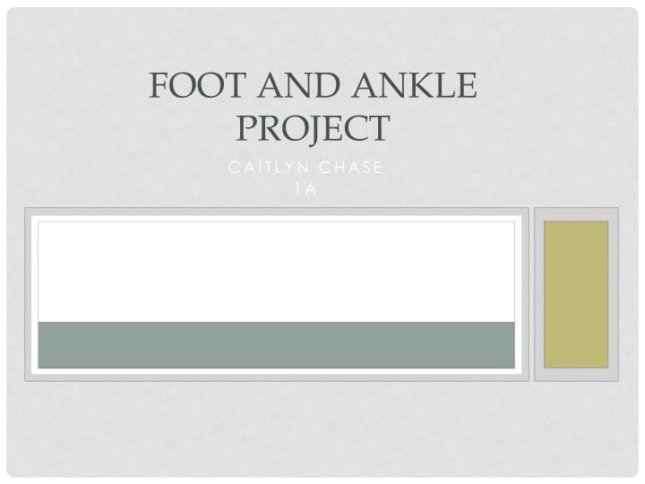 foot and ankle project