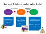 budaya sub budaya dan kelas sosial