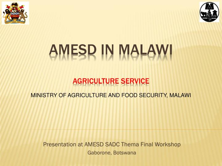 presentation at amesd sadc thema final workshop gaborone botswana n.