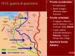 1915 guerra di posizione