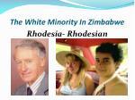 the white minority in zimbabwe