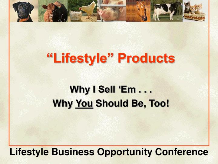 lifestyle products n.