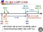 f1 opt h1b