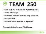 team 250