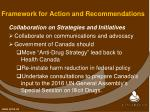 framework for action and recommendations1
